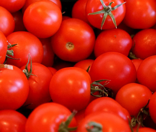 Image result for tomato small image