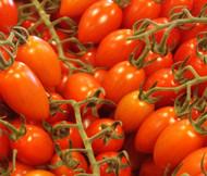 Tomato Roma Plum VFN Organic Lycopersicon Esculentum Seeds