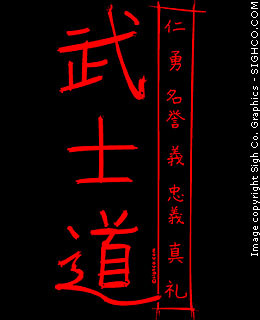 Bushidou: Code of the Samurai hoody
