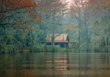 Caddo Lake Excursion