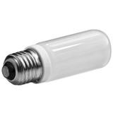 Photo Basics 150w Modeling Lamp