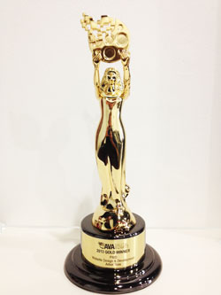 2013 Gold AVA Award Digital Excellence