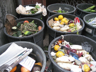 food waste from petrr