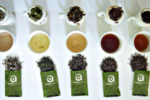tea-taste-2.jpg