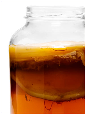 Kombucha Brewing Tips