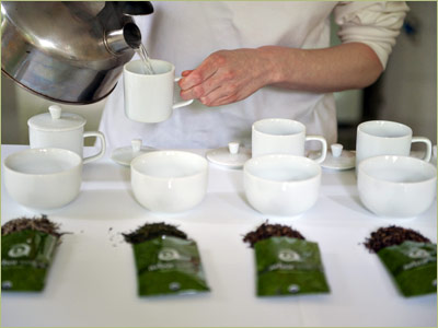 How to Conduct a Teas Tasting: Tea Tasting Step by Step