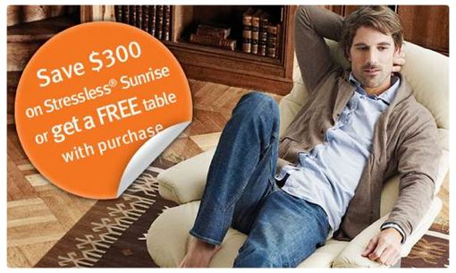 Ekornes 2014 Comfort Plus Promotion displayed