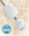 Showerwise Shower Filter