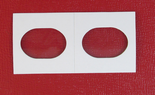 100 Elongated (Flattened) Hole Cardboard 2x2s for Error Cents