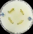 20A OLYM-L1620P NEMA Locking Plug