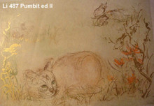 Pumbit the Cat - edition II