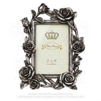 SA2 - Rose & Vine Photo Frame