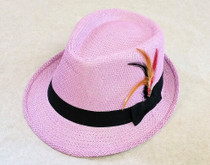 Trilby Hat with feather - Purple