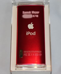Custom Ipod