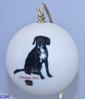 Great for new baby's first Christmas, weddings, graduation, pets, memorials, achievements or to remember a special event.