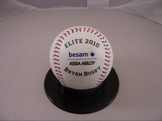 Elite 2010 corporate baseball award