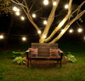 Bulbrite 810007 String Lights