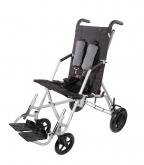Adaptive Strollers