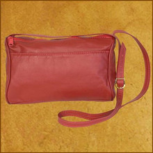 2 Zip Envelope Purse