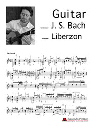 Violin Partita No. 2 in D minor - 3 Sarabande by Bach/Liberzon