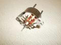 1999-2004 Ford Mustang Dash Gauge Instrument Cluster Speedometer Tachometer Temperature Battery Fuel Motor Servo