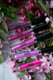 pink and purple liquid lipstick