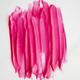 pink tulip glossy lip tint vegan + cruelty-free
