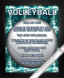 Framed Volleyball 8x10 Sport Poster Print