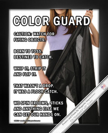 Framed Color Guard Flag 8x10 Sport Poster Print