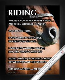 Framed Horseback Riding 8x10 Sport Poster Print