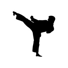 Martial Arts Kick Window Decal