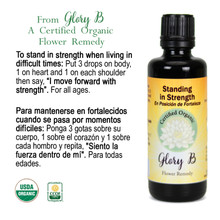 STANDING IN STRENGTH Organic Flower Essence