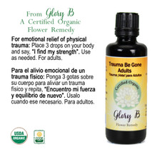 TRAUMA BE GONE ADULTS Organic Flower Essence