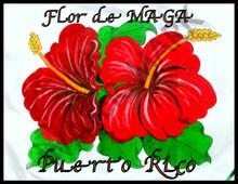 "FLOR DE MAGA PR 18"" X 24"""