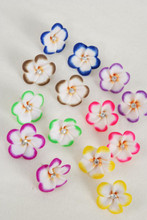 Earrings Paint Flowers-02302