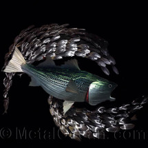 Striped Bass - Custom Metal Wall Hanging Sculpture Art
