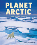 Planet Arctic - Life at the Top of the World