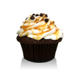Chocolate cake with a caramel infusion topped with vanilla buttercream, a drizzle of caramel, mini chocolate chips and chopped pecans
