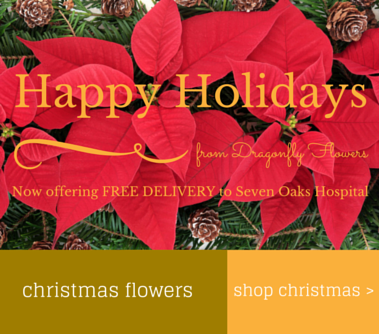 christmas-flowers-dragonfly-flowers-website-2014-edited.png