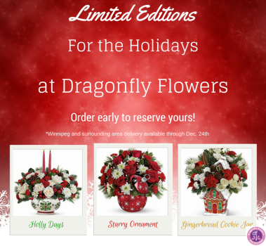 limited-editions-for-the-holidays-christmas-2014-web-banner2.png