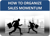 How to Organize Sales Momentum
