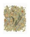 John Betts River Trout #1 Giclée