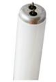 GE 40W Blacklight Fluorescent 4Ft Light Bulb