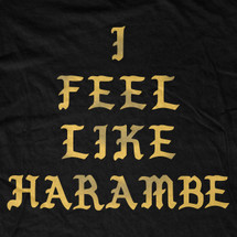 I Feel Like Harambe T-Shirt