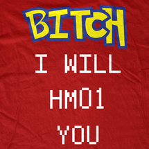 Bitch I will HM01 you! T-Shirt