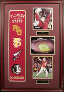 FSU Banner & All Time Greats