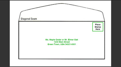 4 1/8 x 9 1/2 Remit Carrier, PLAIN Unprinted Envelopes