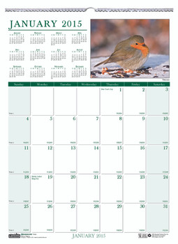 House of Doolittle (HOD3712) Earthscapes Birds Wall Calendar