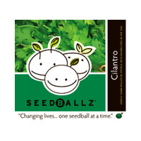 Seedballz Cilantro - 8 Pack