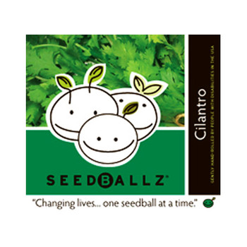 Seedballz Cilantro - 8 Pack